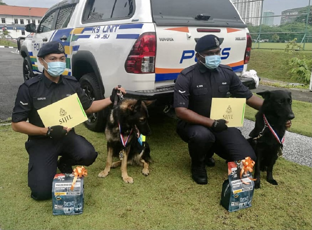 Johor police contingent K9 unit dog Barny and his handler Lance Corporal Calvin Maluni (left) with Mailo and his handler Lance Corporal K. Thiru (right) after being presented with their awards at the Johor police contingent headquarters in Johor Baru today. ― Picture by Ben Tan