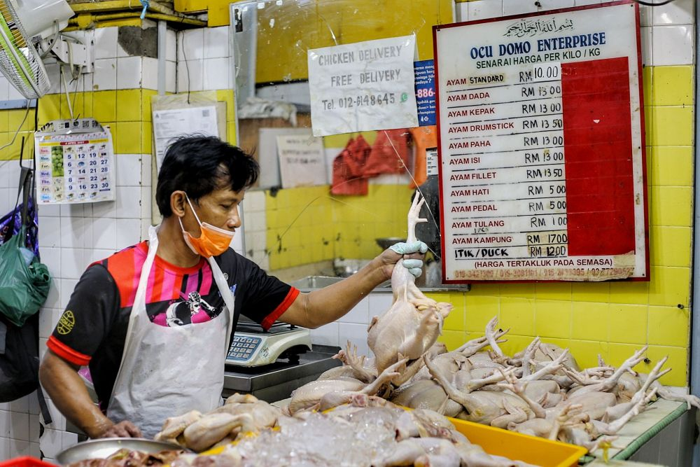 A chicken trader is pictured at the Taman Tun Dr Ismail wet market in Kuala Lumpur April 20, 2021. — Picture by Ahmad Zamzahuri
