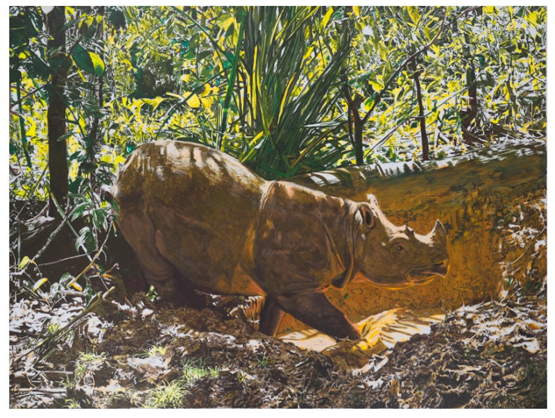 Nasir's most well-known artwork 'Tam', a realistic acrylic painting of the endangered male Sumatran rhinoceros in Malaysia that died in 2019. — Picture courtesy of Kenny Ng