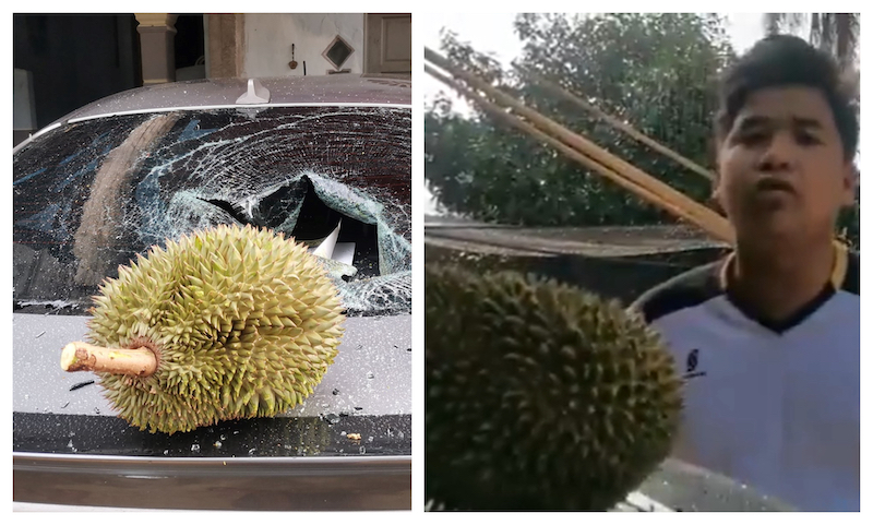 Wan Mahussin showing the durian that smashed his car's windscreen yesterday. — Picture via Wan Mahussin Wan Zain