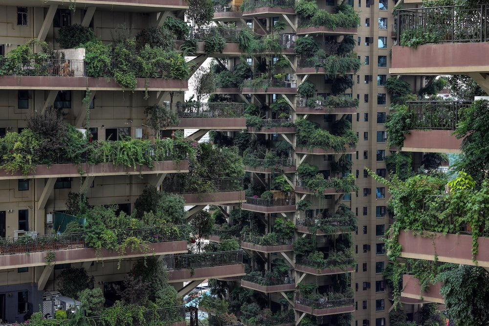 This photo taken on July 12, 2021 shows apartments with balconies covered with plants at a residential community in Chengdu in China's southwestern Sichuan province. — AFP pic