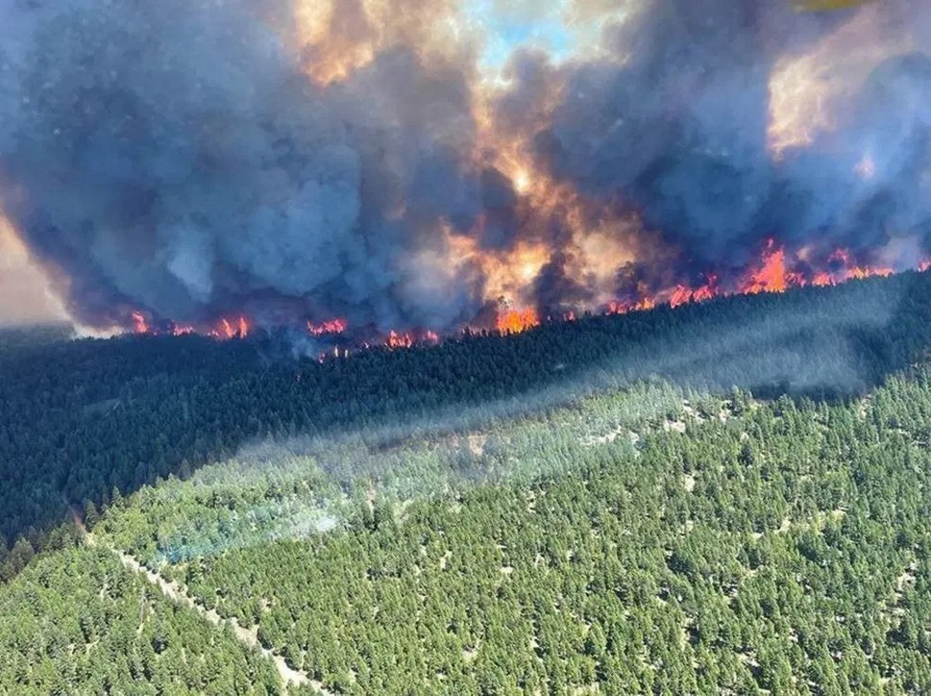 This handout photo courtesy of BC Wildfire Service shows the Sparks Lake wildfire, British Columbia, seen from the air on June 29, 2021. — BC Wildfire Service / AFP pic