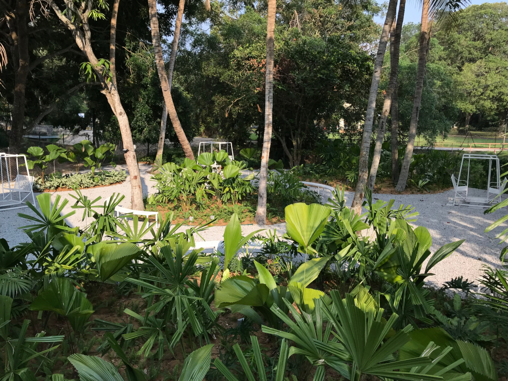 The garden at the Harmony Centre in Penang. — Picture courtesy of Sputnik Forest Labs