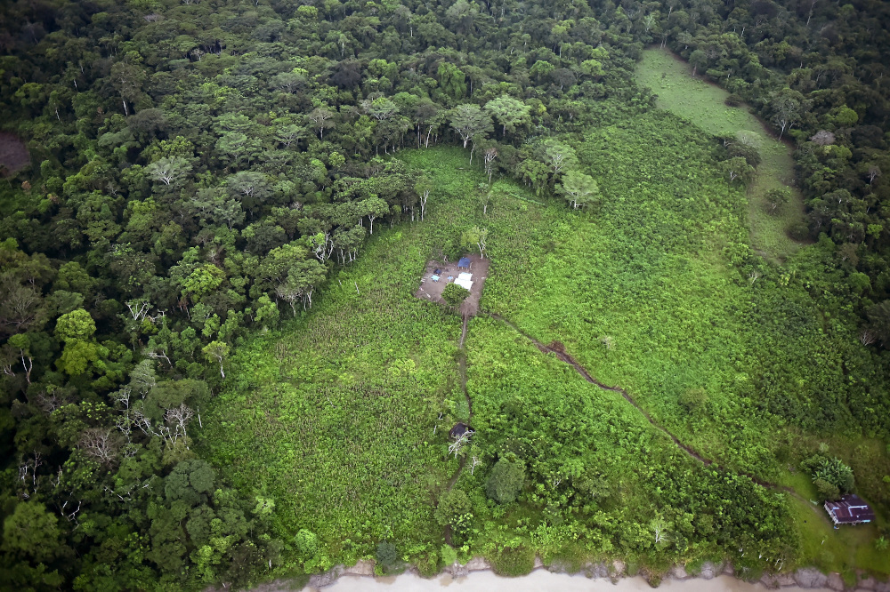 General aerial view of coca field at the Natural National Park in La Macarena, Meta Department, Colombia. — AFP pic