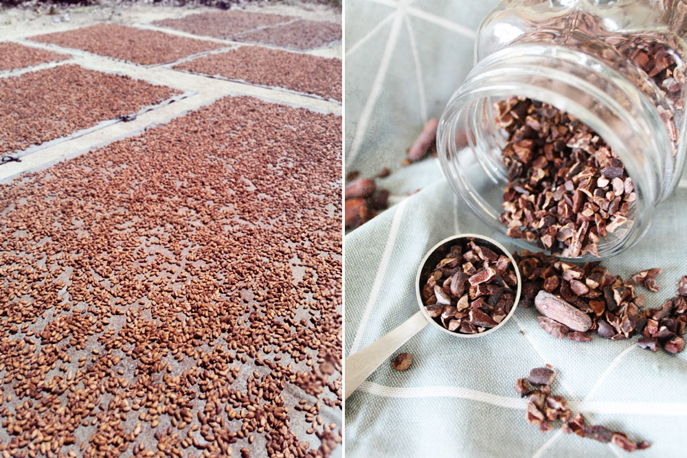 Drying the cacao (left) and raw cacao nibs (right).