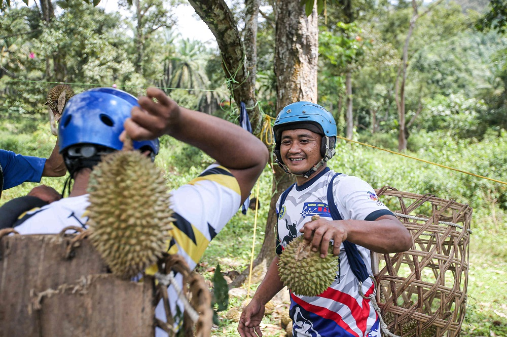 Since the start of the durian season in June, Syafiq said eight of them would collect durians twice a day, 7am and 5pm, before selling it at Pasir Pinji Market and SMK Seri Ampang.