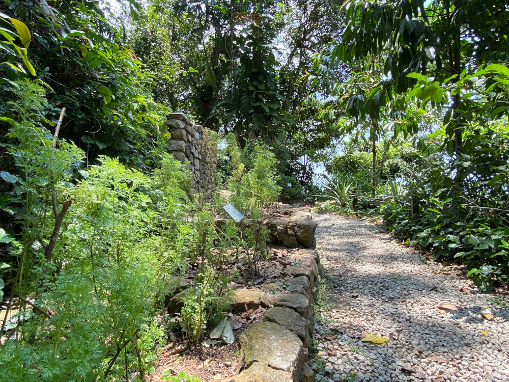 The Tropical Spice Garden is spread out over two hectares with over 500 different types of plants. ― Picture by Steven Ooi KE