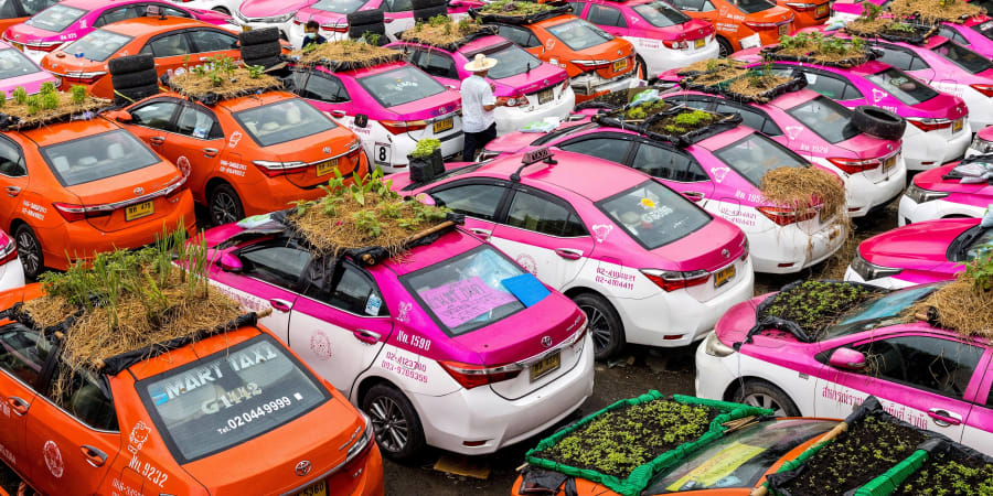 Vegetable gardens are seen on the roofs of vehicles of a taxi rental garage firm, whose cars are currently out of service due to the downturn in business as a result of the Covid-19 coronavirus pandemic, in Bangkok. — AFP pic