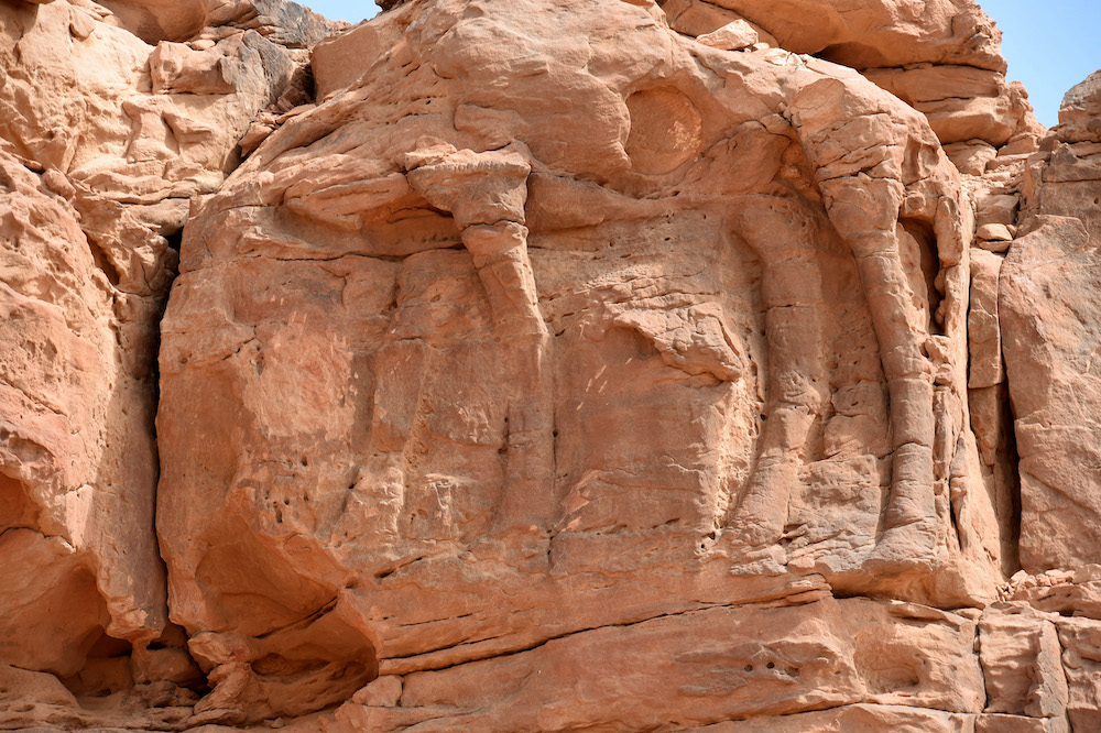 This file photo taken on February 22, 2018, the site of an archaeological discovery about eight kilomtres north of the city of Sakaka in Saudi Arabia's northwestern al-Jouf province, with a carved camel's body. — AFP pic