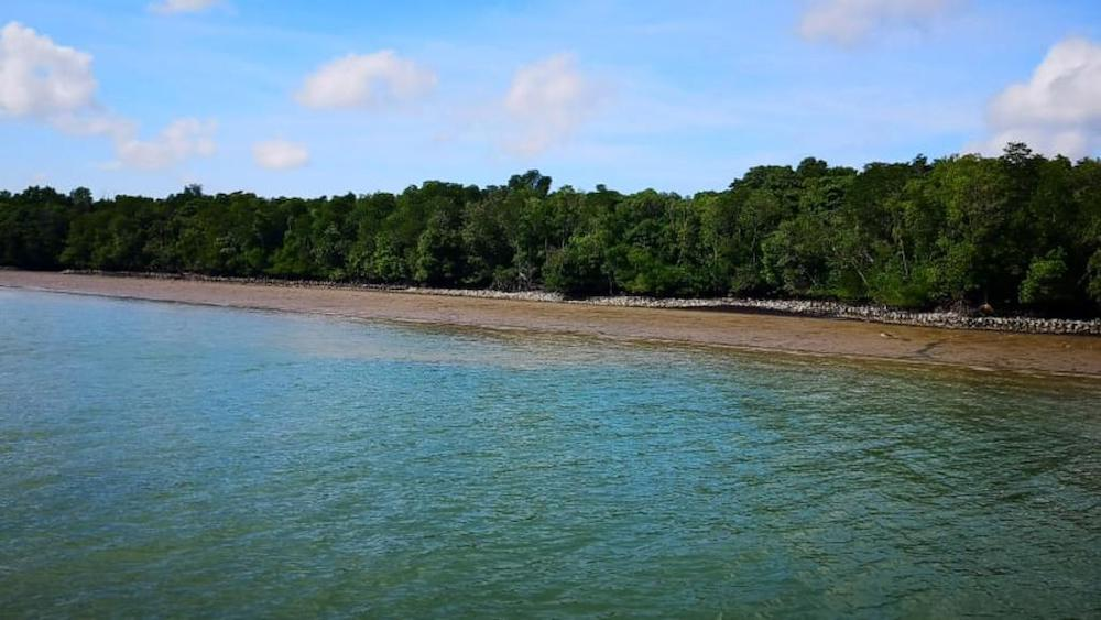 The coastal protection project happening at Pulau Ubin will be similar to the coastal protections along the coastline of Pulau Tekong from 2010. — TODAY pic