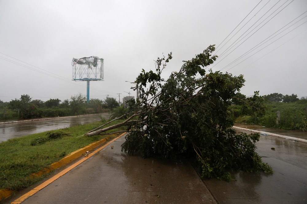 Hurricane Pamela pounds the Pacific coast resort with strong winds as it makes landfall in Mazatlan, Mexico October 13, 2021. ― Reuters pic