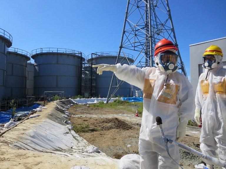 Fukushima was a key agricultural area before the 2011 tsunami disaster. —