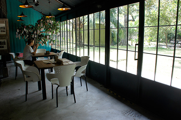 The all-glass back wall overlooks the orchard outside, bringing a bit of the greens inside.