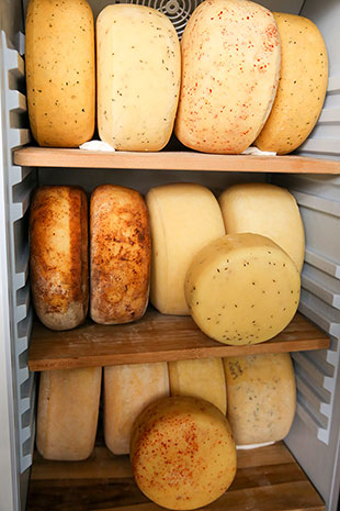 All kinds of cheese wheels are kept chillied in the stand-up refrigerators.