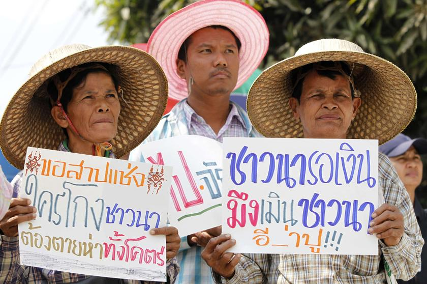 Farmers hold signs as they take part in a rally demanding the Yingluck administration resolve delays in payment from the rice pledging scheme, outside the Commerce Ministry in Nonthaburi province, on the outskirts of Bangkok February 6, 2014. — Reuters