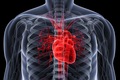 The Statistics Department found that heart disease is still the principal cause of death among Malaysians. —  AFP pic