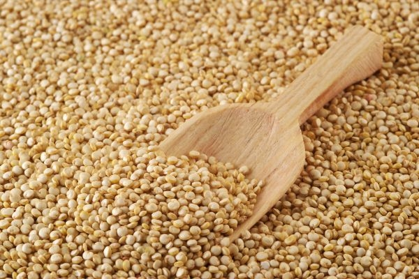 Experts say quinoa is highly nutritious, gluten-free, and packed with essential amino acids, fibre, vitamins and minerals. — AFP pic